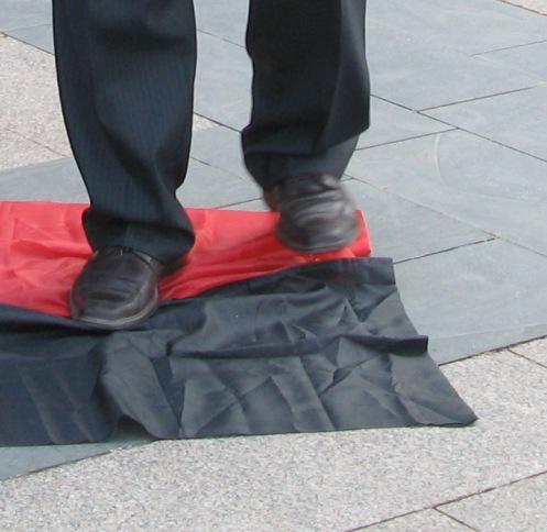 Депутат Харьковского городского совета Владимир Лушницкий вытирает ноги об бандеровский флаг